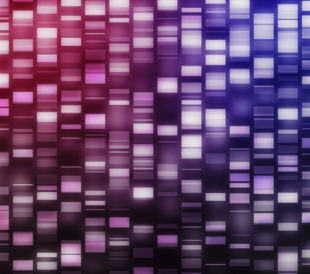 Pink and purple DNA strands on black background. Image: ESB Professional/Shutterstock.com.