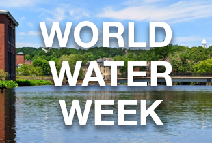 The Ipswich River with World Water Week written across the image.