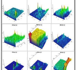 WDXRF Mapping