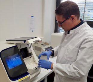 Scientist using the SeqStudio instrument