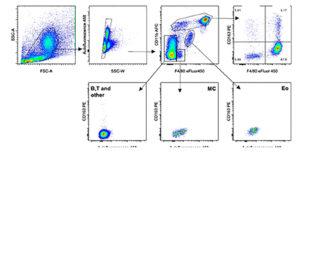tnkupj for macrophages