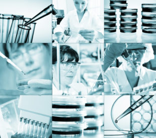 Work in a laboratory. Image: Science photo/Shutterstock.com