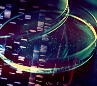 Petri dish and genetic data abstract concept. Image: isak55/Shutterstock.com