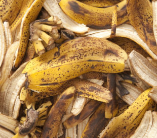 Upcycling Peels and Stems May Affect Food Safety