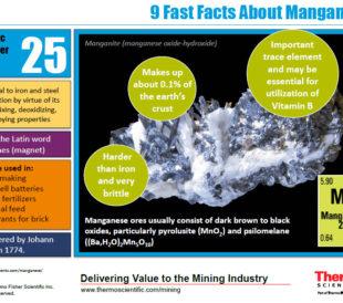 Manganese Infographic