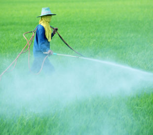 Farmer spraying pesticide on field. Image: sakhorn/Shutterstock.com