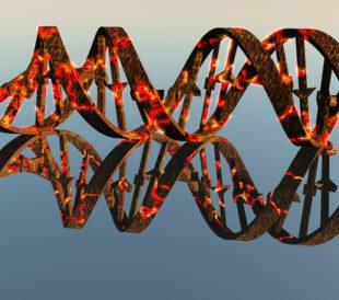 DNA damage. Image: Bruce Rolff/Shutterstock.com