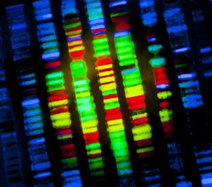 DNA sequence. Image: Gio.tto/Shutterstock.com