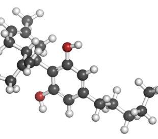 Cannabinoid. Image: molekuul.be/Shutterstock.com